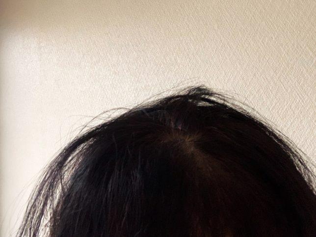 ザプロダクトオーガニックヘアワックスつける前